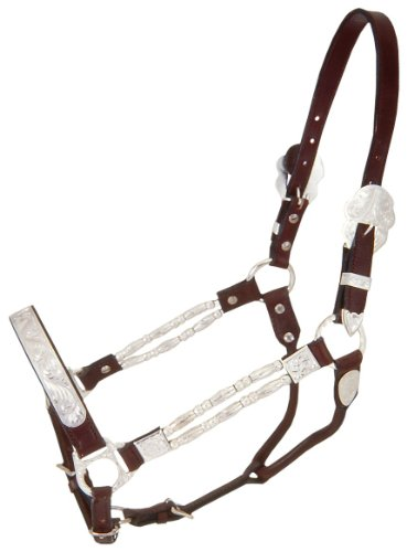 Tough 1 Royal King Silver Ferrules Show Halter, Horse, Dark oil