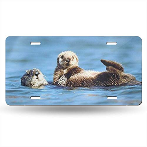 Jeepmother Sea Otter Pup Baby Ocean Wildlife Animal 612inchs Feel Metal Tin Sign Plaque for Home,Bathroom and Bar Wall Decor Car Vehicle License Plate Souvenir Car Decoration