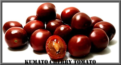 Kumato Cherry Tomato Seeds! 20 Seeds GREAT YIELDS!