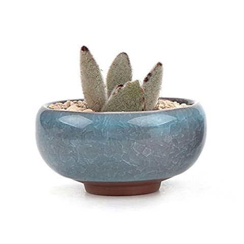 T4U 2.5 Inch Ceramic Ice Crack Zisha Serial succulent Plant Pot Cactus Plant Pot Flower Pot Container Planter Ice blue
