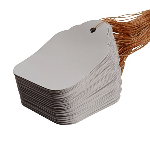 Oldhill Plastic White Plant Labels Garden Labels Hanging Tree Tags with Strings (200) (Tree Plastic Tags)