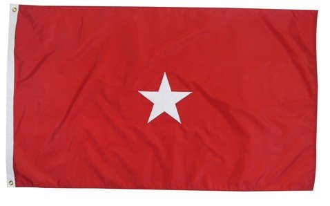 gadier General Indoor Outdoor Appliqued Nylon Flag Lined Pole Hem Only 3' X 5' (Brigadier General Flag)