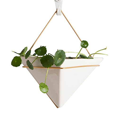 AsureQ 8'' Ceramic Geometric Hanging Planter Succulent Flower Pot Air Plant Vase Holder for Indoor and Outdoor Decorative (Triangle) by AsureQ