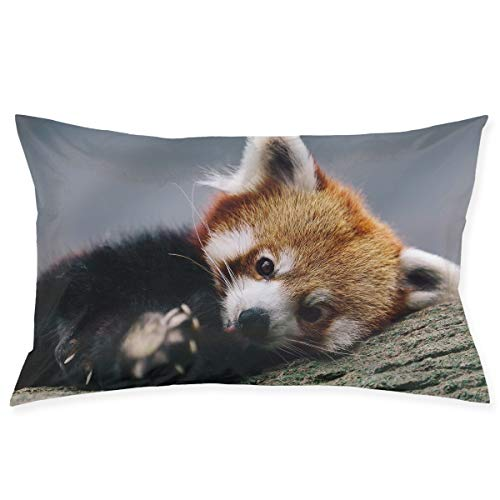 Kidhome 2030 Inch Throw Pillow Cases Cute Red Panda Decorative Pillowcase Cushion Cover for Sofa]()