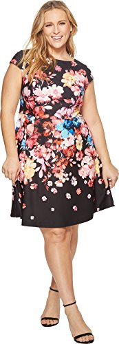 Adrianna Papell Women's Plus Size Spring in Bloom Printed Fit and Flare Black Multi 24W