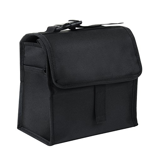 Vitalismo Insulated Lunch Bag Large Capacity Foldable Lunch Tote Bag for Outdoor Camping Picnic Black