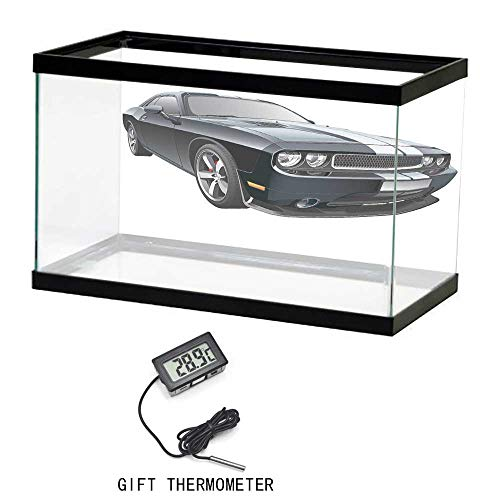 (Fish Tank Backdrop Static, Cars, Black Modern Pony Car with White Racing Stripes Coupe Motorized Sport Dragster, Black Grey White, 24
