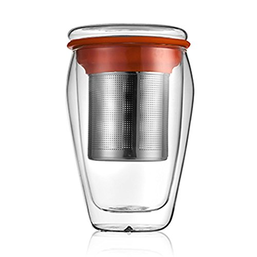 Zarif International Double Wall Glass Cup with Lid and Stainless Steel Filter-Tea Mug-Tea Lovers Home and Outdoor-300ml(10oz)-Blue and Orange Silicone Band (Orange)