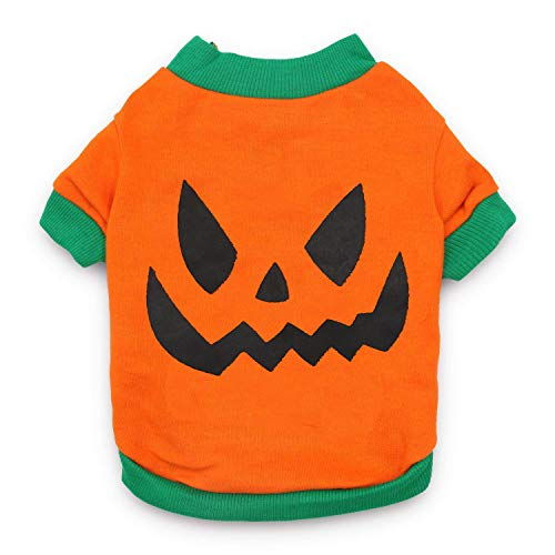 Simple Halloween Costumes For Dogs (DroolingDog Dog Halloween Clothes Dog Shirt with Evil Pumpkin Head for Small Dogs,)