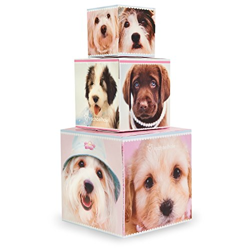Rachael Hale Dog - Rachael Hale Glamour Dogs Party Supplies - Centerpiece Gift Boxes