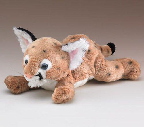 Cougar Cub 12 by Wild Life Artist Wildlife Artists 16956