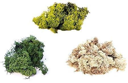 inerra FINLANDE Mousse - Multipack de 3 couleurs - RENNES Mousse Loisirs Cré atifs plantes pots fleurs é cran d'affichage MODELAGE - Vert Foncé , 3 x 25g Bags