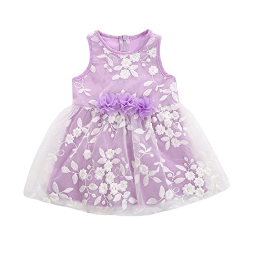 - Goodtrade8 Newborn Toddler Baby Girl Embroidery Floral Ruffle Layer Tulle Princess Dress (0-3 Months, Purple)