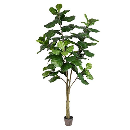 Vickerman 525616-7' Potted Fiddle Tree 89Lvs (TB180284) Generic Home Office Tree