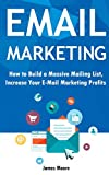 Email Marketing: How to Build a Massive Mailing List, Increase Your E-Mail Marketing Profits