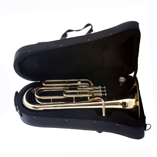 Hawk SBAR Student 3-Valves Lacquered Baritone Horn, Gold by Hawk (Image #5)
