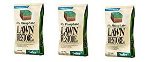 Safer Brand 9333 Ringer Lawn Fertilizer DTuTcb, 75 Pounds