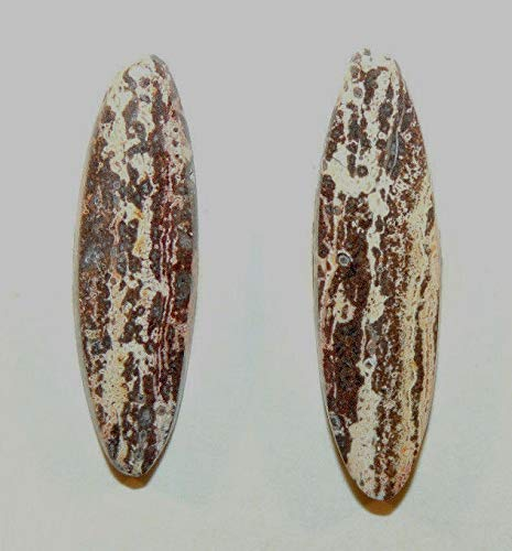 Strata Jasper Set of 2 Cabochons 33x9mm from Mexico with 5mm Dome - Strata Jasper