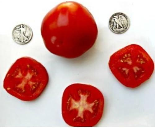 Amazon Com Break O Day Organic Heirloom Tomato Seeds The