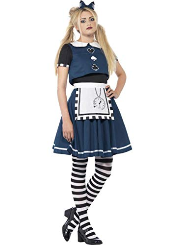 Fest Threads 2 PC Adventurer Day Dreamer Goth Alice Dark Blue Dress & Headband Party Costume ()