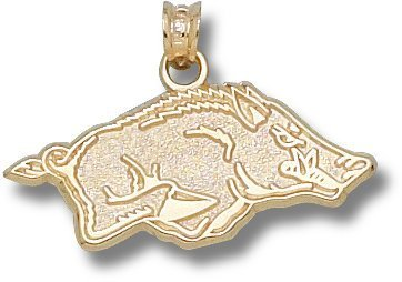 Arkansas 14K Gold Pendant by LogoArt