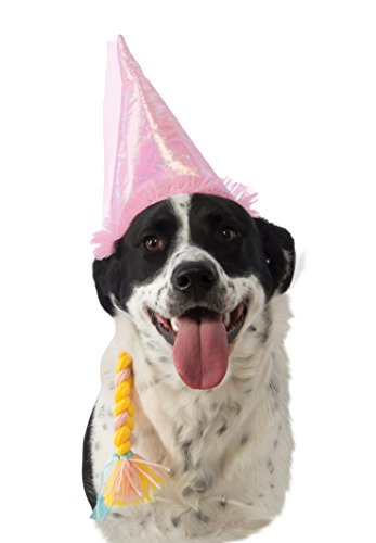 Rubie's Prince Dog Hat with Braid
