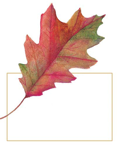 Thanksgiving Placecards Dinner Table Decorations Watercolor Leaves 16 pack