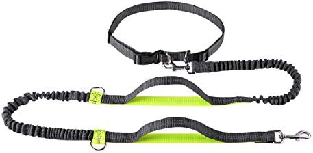 April Pets Retractable Leashes Adjustable