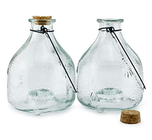 Darware Glass Wasp Traps (2-Pack); Wasp Catchers