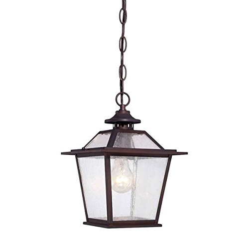 Acclaim 9706ABZ Salem Collection 1-Light Outdoor Light Fixture Hanging Lantern, Architectural Bronze by Acclaim
