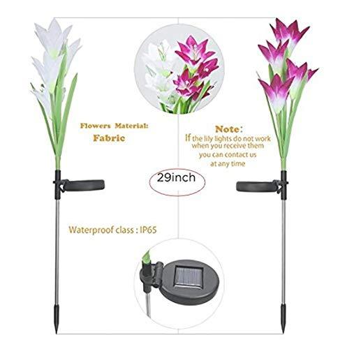 ixaer Solar Garden Lights Outdoor 2 Pack Solar Powered Lights 8 Lily Flower Multi-Color Changing LED Solar Landscape Lighting Light (White and Purple)