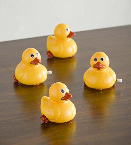 Wind-Up Duckies (set of 4) - Wind Duck Up