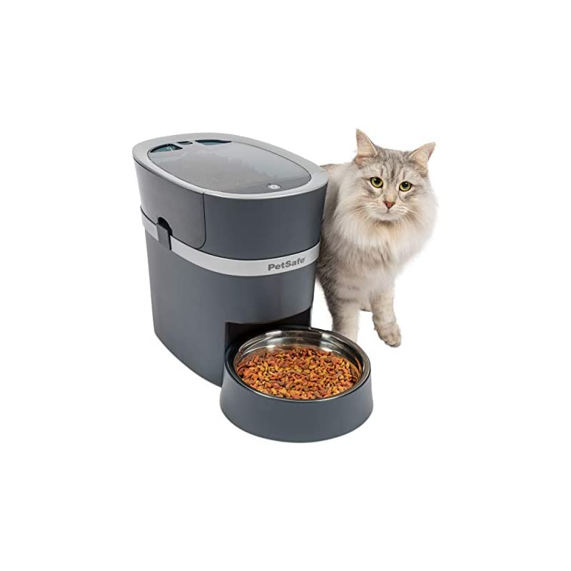 petsafe-smart-feed-automatic-dog