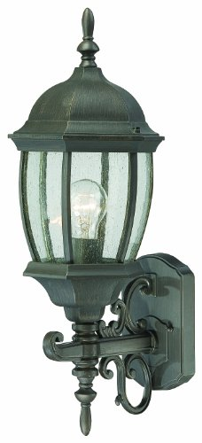 Thomas Lighting SL922563 Covington Outdoor Wall Lantern, Painted - Covington Outdoor Wall