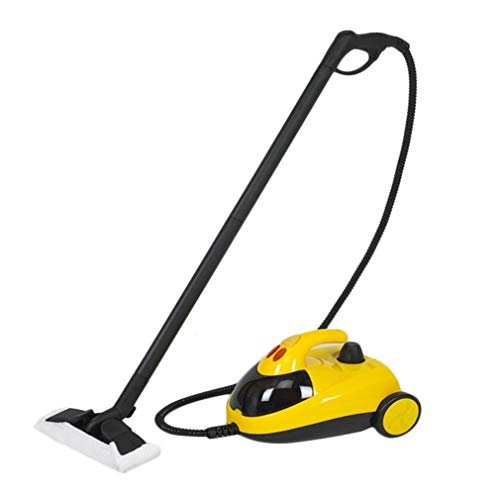 Holarose Portable High Pressure Steam Cleaner, Multi Purpose Carpet Steam Cleaner Floors, Cars Detailing, Home Use More (220V) (Best Affordable Carpet Steam Cleaner)