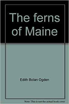 The ferns of Maine