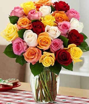 Flaberry Rainbow Roses