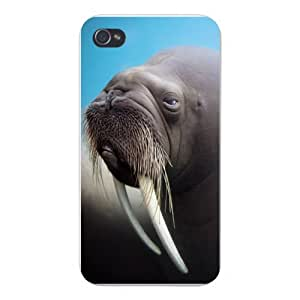 Apple Iphone Custom Case 5 / 5s White Plastic Snap on - Closeup Walrus w/ Large Tusks & Whiskers