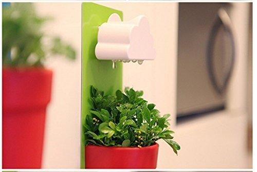 SZAT New Creative Indoor Wall-Hanging Cloud & Flower Mount Rainy Pot (Green) by SZAT