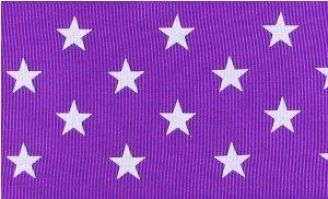 Felt Purple Star Wand (HipGirl Boutique 5yd 2.25 Inch Wide Grosgrain Ribbon. (5yd 2.25