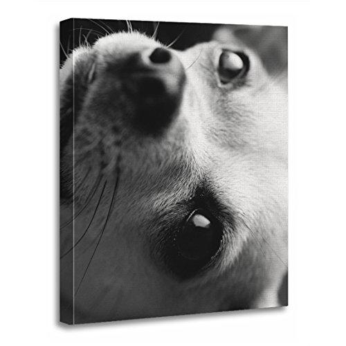 - TORASS Canvas Wall Art Print Dog Amber The Chihuahua Black White Monochrome Artwork for Home Decor 12