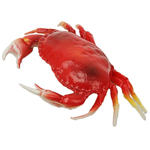 Crab Fish - Wayber Lifelike Crab, 13 x 9 inch Super Large Plastic Crabs Model Home Decor, Restaurant Display, Photography Prop, Kid Pretend Play Toy, Simulated Marine Creatures Collection Size L