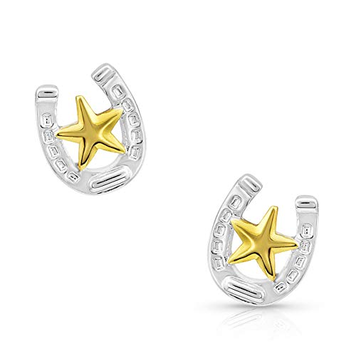 Montana Silversmiths Small Stars & Horseshoe Post Earrings (ER803)