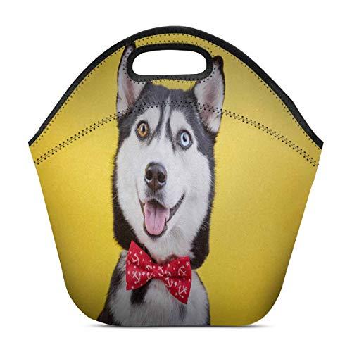InterestPrint Neoprene Lunch Bag Funny Husky Breed Dog Insulated Tote Handbag