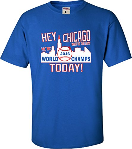 Youth Chicago World Champs T Shirt product image