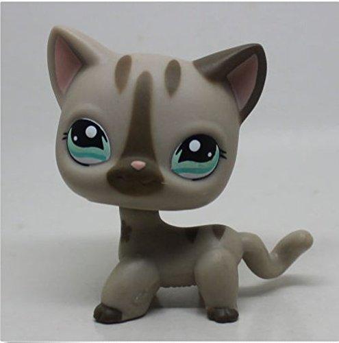Littlest Pet Shop Gray Short hair Cat kitty Tan Blue Eyes LPS (Gray Little Cat)