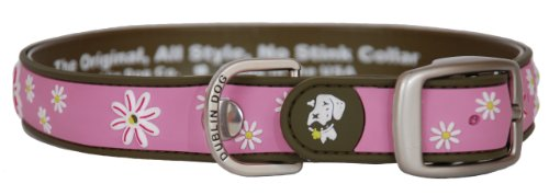 All Style 12-1/2-Inch by 17-Inch No Stink Dog Collar, Medium, Cotton Candy
