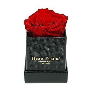Dear Fleurs Handmade Preserved Flower, Fresh Rose, Eternity Rose, Gift for Valentine's Day, Anniversary, Birthday, Petit Rose - Blak 109