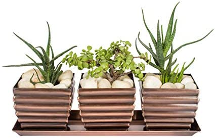 H Potter Succulent Planter Plant Pots Window Box with Tray Outdoor Indoor Flower Herb Container for Home Patio Garden Deck Balcony Antique Copper Finish