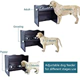 Petsfit Adjustable Elevated Feeder with 2 Stainless Steel Bowls, Dog Bowl Stand 21 x 12.5 x 18.5 Inch
